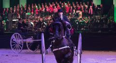 Friesian Proms  10 en 11 januari 2019